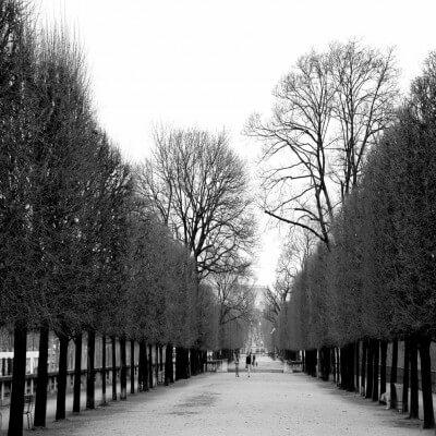 cuadros modernos fotografía jardin des Tuilleries
