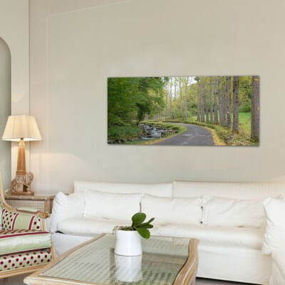 Landscapes painting photography path to Canejan