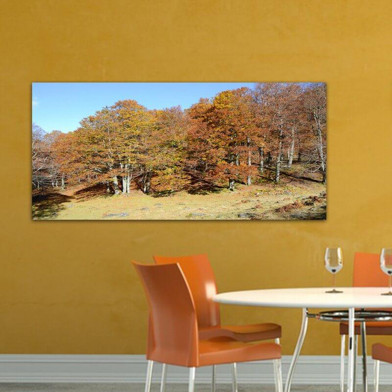 Tableau photographie paisajes Artiga de Lin 2